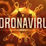 Column #HR278  Coronavirus and a Great White attack!